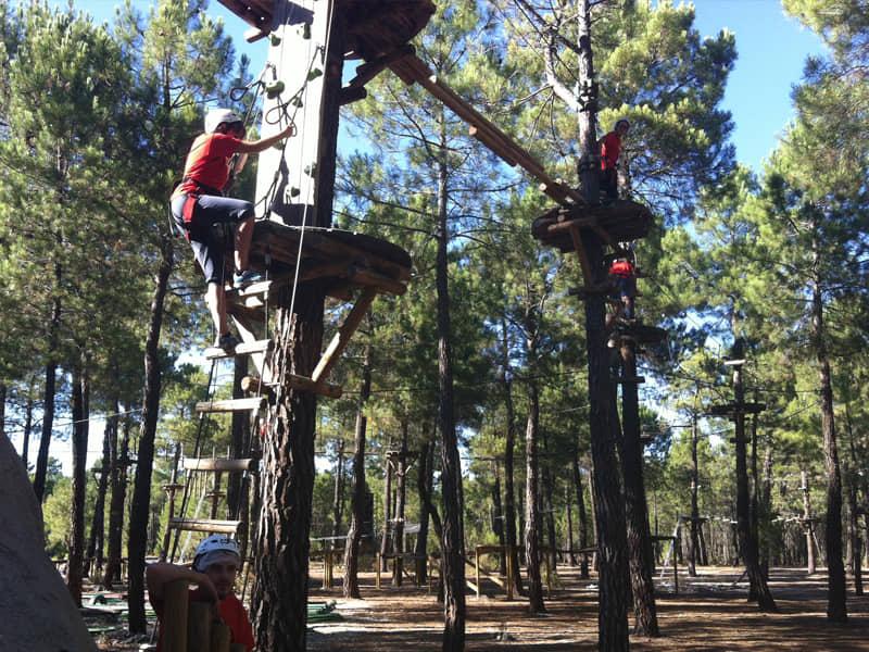 Circuito de árboles con tirolina.