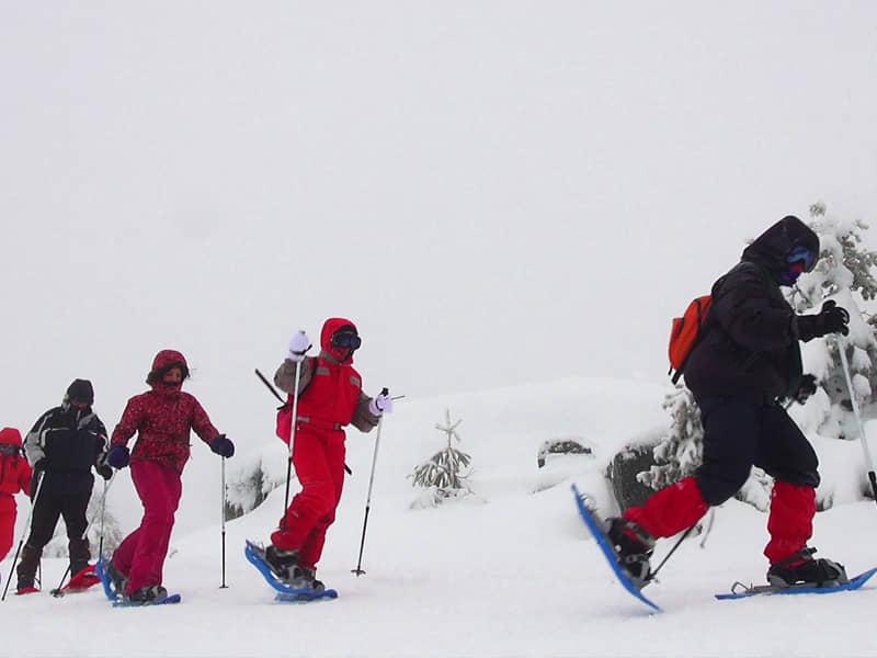 Raquetas de nieve por la Chorrera Mojonavalle.