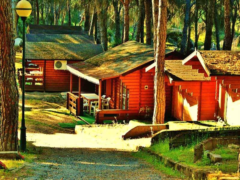 Camping Ardilla Roja