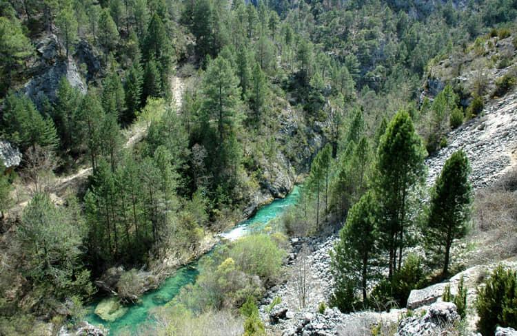 rio-parque-natural-alto-tajo-grupoasdon