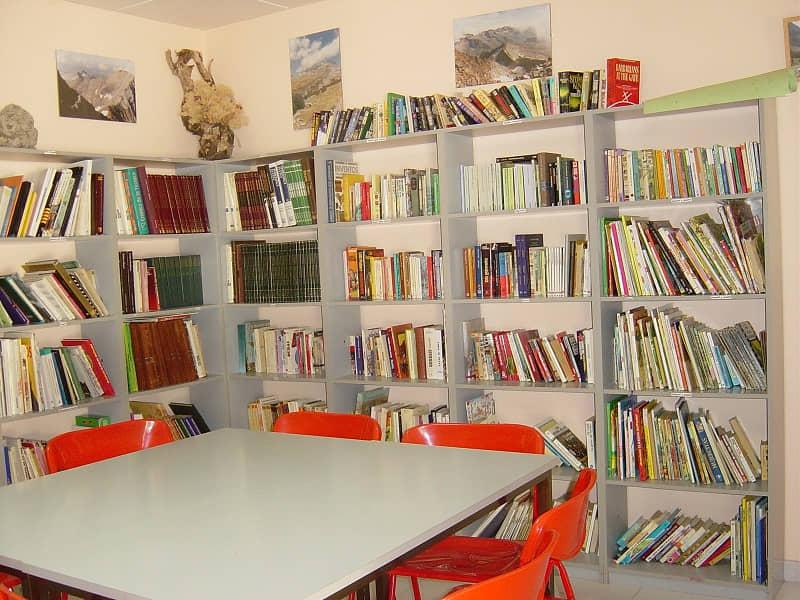 los niños disfrutan de la biblioteca