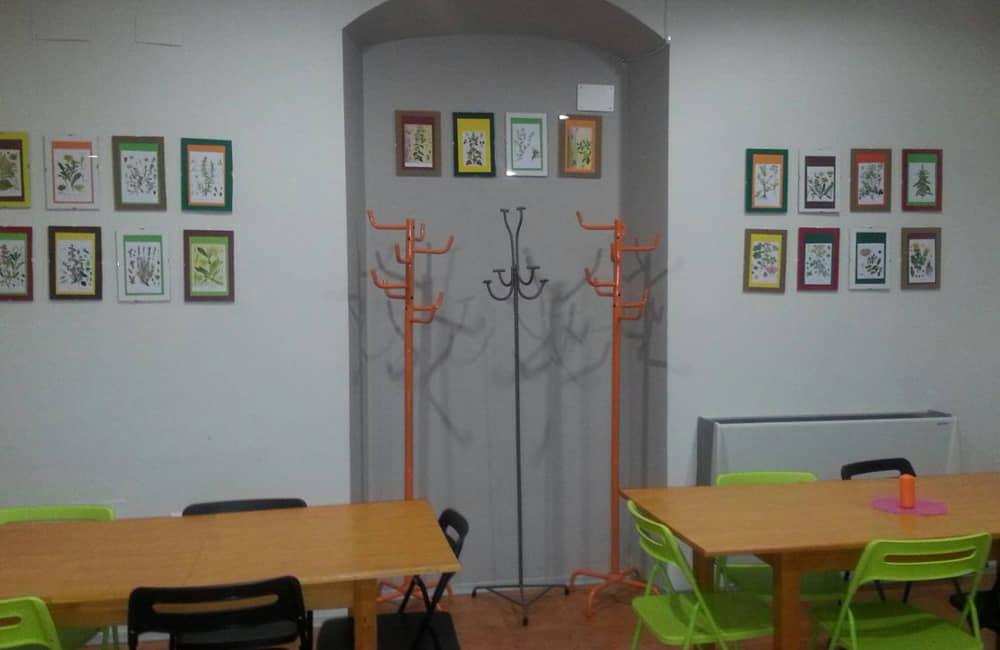 Centro Multiaventura de Segovia