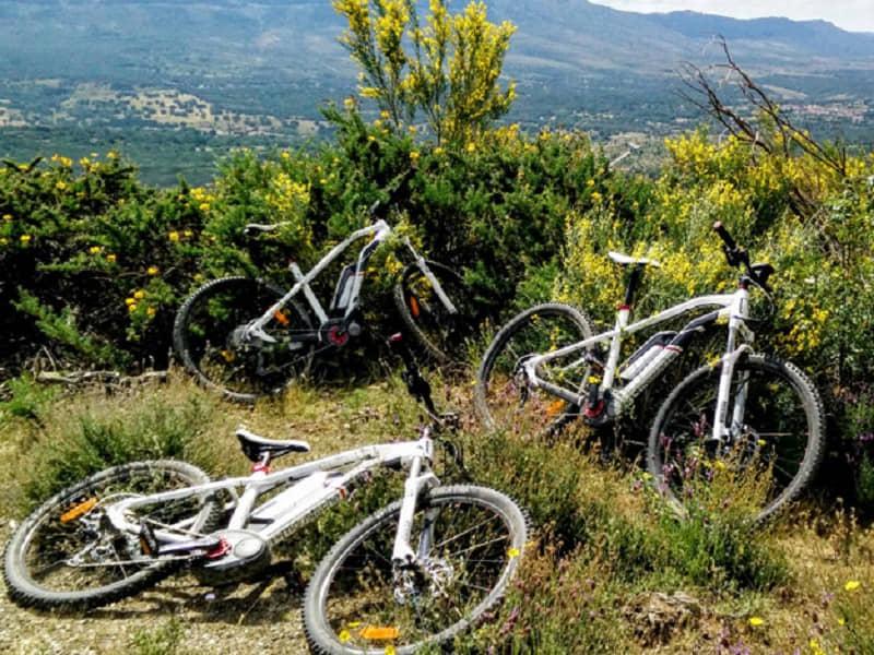 De la granja a la bici